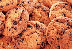 108マイクロピースジグソーパズル チョコチップクッキー
