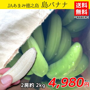 JAあまみ徳之島/島バナナ/送料無料