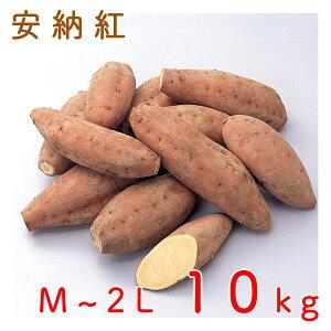 鹿児島県種子島産安納芋(安納紅) 10kg 送料無料 さつまいも JAグループ鹿児島<5-8営業日以内に出荷>