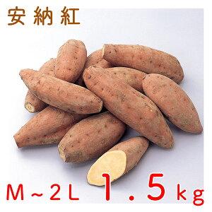 鹿児島県種子島産安納芋(安納紅) 1.5kg 送料無料 さつまいも JAグループ鹿児島<5-8営業日以内に出荷>