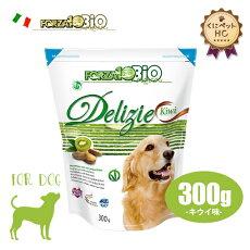 フォルツァ10(FORZA10)犬用ビオオーガニックフルーツビスケットキウイ味300g