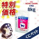 【國枝PHC 特別価格!】ロイヤルカナン 犬用 ベッツプラン ニュータードケア 8kg・この商品は、生後6ヶ月齢からの避…