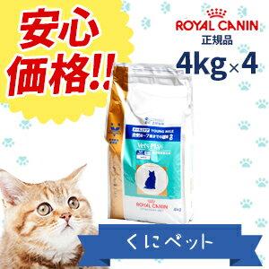 【ロイヤルカナン】 猫用 ベッツプラン メールケア 4kg【4個パック】【準療法食】