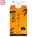 黄酸汁 豊潤サジー300ml お試しサイズ オーガニックサジー使用のサジージュース