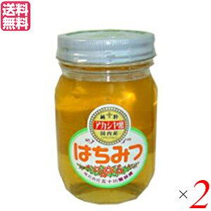 【ポイント最大3倍!】はちみつ 蜂蜜 国産 五十川養蜂園 国産はちみつ アカシア 500g 2個セット 送料無料