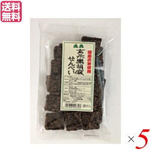 せんべい ギフト 煎餅 恒食 玄米黒胡麻せんべい 100g 送料無料 5袋セット 母の日 ギフト プレゼント
