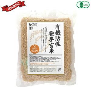 発芽玄米 玄米 国産 オーサワ 国内産有機活性発芽玄米 500g