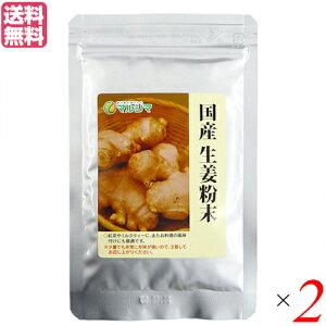 生姜パウダー 生姜 国産 マルシマ 国産生姜粉末 20g 2袋セット 送料無料