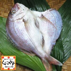【鮮魚セット同梱専用商品】【単品購入不可】【鮮度抜群CAS冷凍品】【天然魚】宇和海朝獲れ鮮魚の一夜干し「真鯛1枚」