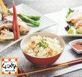 【送料無料】【鮮度抜群CAS冷凍品】愛媛八幡浜産天然真鯛を食べつくす鯛めしセットB(2-3人前)