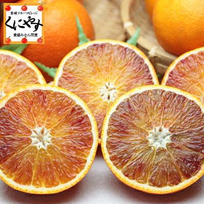 【送料無料】【希少品】【お試し品】愛媛産ブラッドオレンジ6キロ(3キロ×2箱)(タロッコ)「お試しタロッコ3×2」