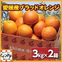 【送料無料】【希少品】【お試し品】愛媛産ブラッドオレンジ6キロ(3キロ×2箱)(タロッコ)