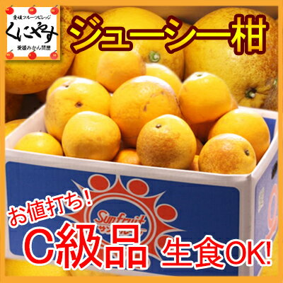 【送料無料】お値打ちC級品ジューシー柑10kg(10kg×1箱)河内晩柑と同一品種!「C級品ジューシー柑10」
