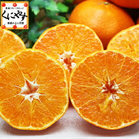甘平 かんぺいみかん 送料無料 訳あり愛媛甘平10kg(10キロ×1箱)せとかにも匹敵する柑橘 わけあり「訳あり甘平10」