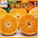 【送料無料】【ファミリー用】愛媛甘平(かんぺい)約5kg(見た目綺麗のため贈答可)せとかにも匹敵する柑橘