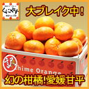 甘平 かんぺいみかん【送料無料】【数量限定】訳あり愛媛甘平5kg(5キロ×1箱)せとかにも匹敵する柑橘 わけあり「訳あり甘平5」