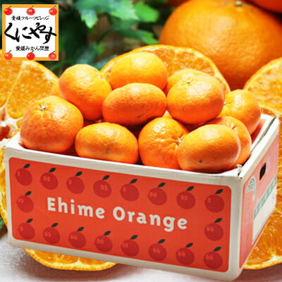 甘平 かんぺいみかん 送料無料 訳あり愛媛甘平5kg(5キロ×1箱)せとかにも匹敵する柑橘 わけあり「訳あり甘平5」