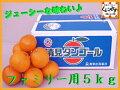 【全国送料無料】愛媛西宇和産清見タンゴールファミリー用5kg(2Lサイズ約20個入り)