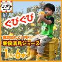 【送料無料】愛媛清見果汁100%ジュース1リットル6本セットストレートジュース,みかんジュース詰め合わせ,ギフト【楽…