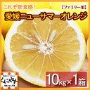 【送料無料】愛媛ニューサマーオレンジ(小夏)ファミリー用10kg(10kg×1箱)
