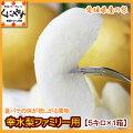 【送料無料】梨,幸水愛媛産幸水梨ファミリー用5キロ