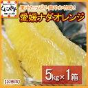 【送料無料】愛媛ナダオレンジお得用5kg皮むき簡単食べ易い冷やして食べるとひんやりジューシー河内晩柑「お得用ナダオレンジ5kg」