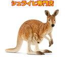 【シュライヒ専門店】シュライヒ カンガルー 14756 動物フィギュア ワイルドライフ Wild Life サファリ Safari schleich