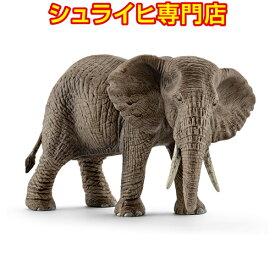 【シュライヒ専門店】シュライヒ アフリカ象 メス 14761 動物フィギュア ワイルドライフ Wild Life サファリ Safari schleich