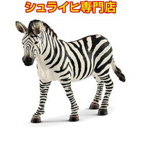 【シュライヒ専門店】シュライヒ シマウマ メス 14810 動物フィギュア ワイルドライフ Wild Life サファリ Safari schleich
