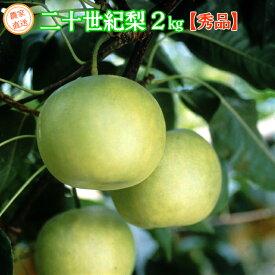 二十世紀梨 秀品 ご贈答用 2kg(5〜6玉) 鳥取県産 送料無料 ギフト 産地直送(※北海道、沖縄は別途送料を頂戴いたします)