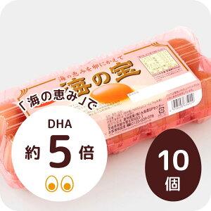 DHAが通常の約5倍! 海の宝 10個(MSサイズ〜LLサイズ)生卵/たまご/卵/玉子/卵かけご飯/白玉/お試し/高級/高級卵/濃厚/鶏卵/栄養/新鮮/ビタミン/家庭用/業務用/まとめ買い/卵かけ/ご飯/パッ