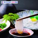 国産天然ごまフグ ふぐ刺し2人前(約60g) 福井県産 贅沢 国産 ふぐ フグ 河豚 ごまふぐ 天然 ゴマフグ 酒の肴 おつま…