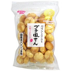 風見米菓 プチ風せん 130g 1袋