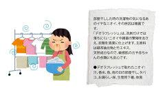 デオラフレッシュ液体お徳用詰替え540ml[二トムズ]