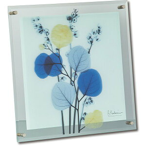 「カラフルユーカリ」X−RAY ガラスアート Mサイズ [絵画通販]花 レントゲンアート アート【絵のある暮らし】【壁掛けフックつき】