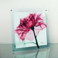 「ティールローズ」X−RAYガラスアート[絵画通販]花レントゲンアートアート【絵のある暮らし】【壁掛けフックつき】