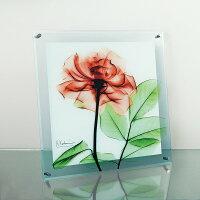 「ローズ」X−RAYガラスアート[絵画通販]花レントゲンアートアート【絵のある暮らし】【壁掛けフックつき】
