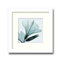 「Hibiscus&Bud」(small)【X-rayPhotograph】StevenN.Meyers(エックスレイフォトグラフインテリアアートフレーム)[絵画通販]【絵のある暮らし】