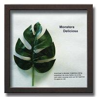 「MonsteraDeliciosa1」【リーフコレクション】(リーフインテリアフレーム)【人工観葉植物フレーム】[絵画通販]【絵のある暮らし】
