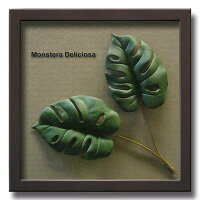 「MonsteraDeliciosa2」【リーフコレクション】(リーフインテリアフレーム)【人工観葉植物フレーム】[絵画通販]【絵のある暮らし】