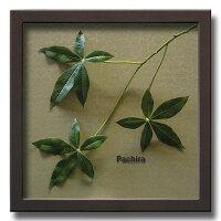 「Pachira」【リーフコレクション】(リーフインテリアフレーム)【人工観葉植物フレーム】[絵画通販]【絵のある暮らし】