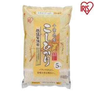 米 5kg こしひかり アイリスの低温製法米 千葉県産こしひかりアイリスオーヤマ お米 ご飯