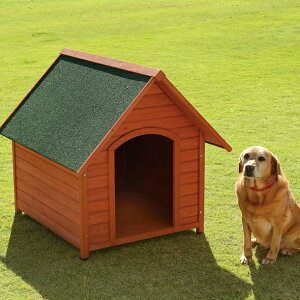 犬小屋 ハウス 屋外 大型犬 木製犬舎 天然木の快適ハウス中〜大型犬 おしゃれ 木目 しつけ 留守番 シンプル アイリスオーヤマ
