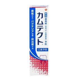【在庫限り】カムテクト 105g 歯磨き粉 歯みがき デンタルケア ハミガキ はみがきこ アース製薬 【D】【KT1G】【PCTK】