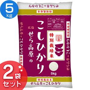 【令和2年産】 特別栽培米 広島県産 せら高原のこしひかり(5kg×2袋) 送料無料 お米 世羅 白米 ひろしま 10キロ 10kg コシヒカリ 清らかな水 豊かな日差し 米どころ ごはん ご飯 ライス 広島産 西