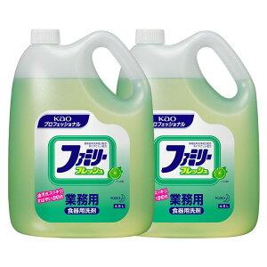 [2個セット]ファミリーフレッシュ 4.5kg 送料無料 業務用 洗剤 食器 台所洗剤 油汚れ 2本セット Kao ライムの香り プロフェッショナル 植物由来 【D】