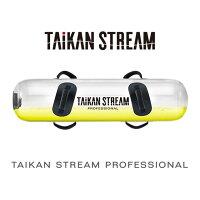【直送】タイカンストリームプロフェッショナルAT-TP2230F