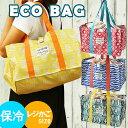保冷エコバッグ レジかごサイズ 『レジャー&ショッピングバッグ』/ レジカゴ型 保温 レジかごバッグ