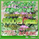 デザイナーにおまかせ!季節の寄せ植え 3000円【寄せ植え・グループプランツ・お祝い・インテリア・新築祝い】