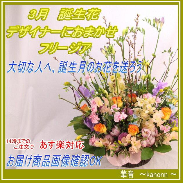 3月 誕生花 フリージアおまかせアレンジメント【送料無料 あす楽 誕生日 花 アレンジ フリージヤ 誕生花 花束 お祝 】